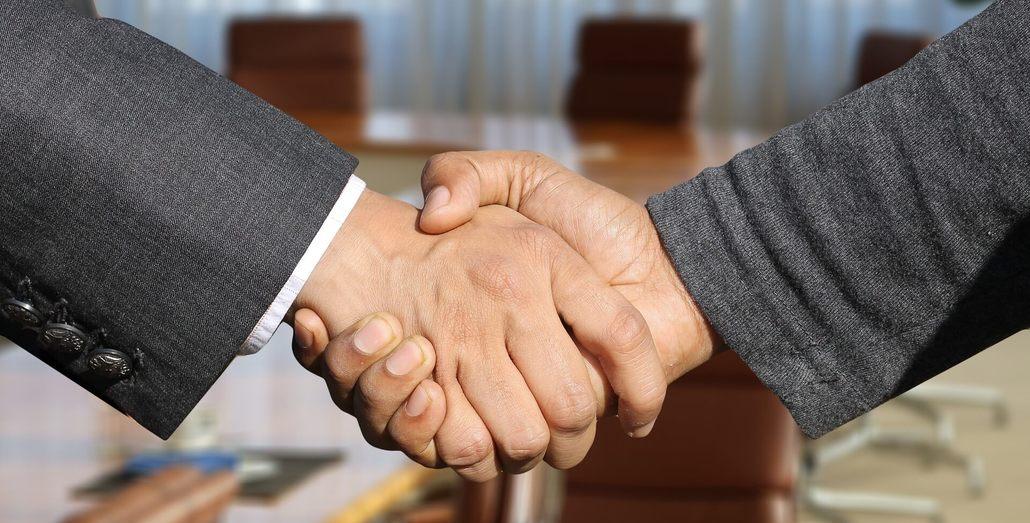 socios de negocios